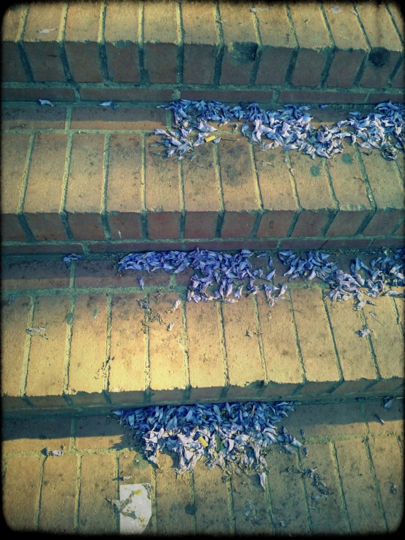 Lomogram_2014-10-22_03-18-07-PM
