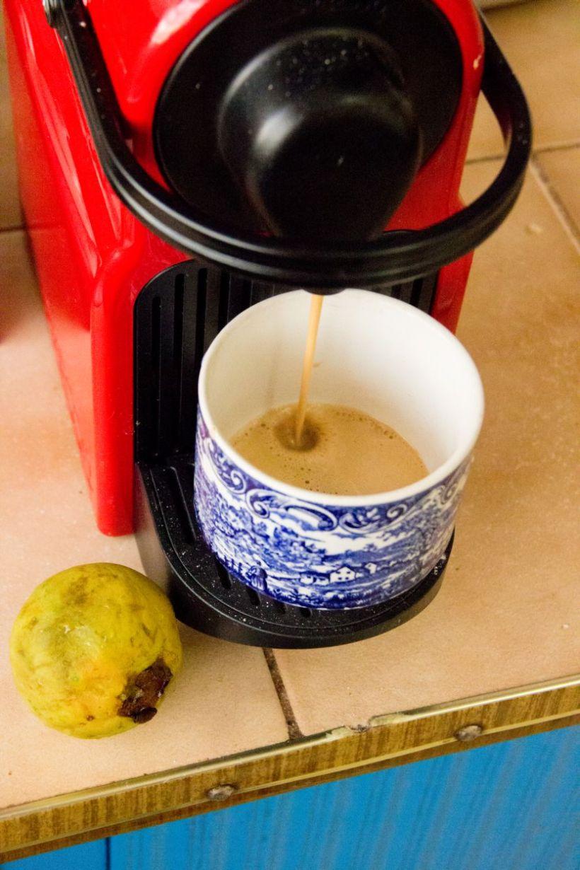 teatimeguava