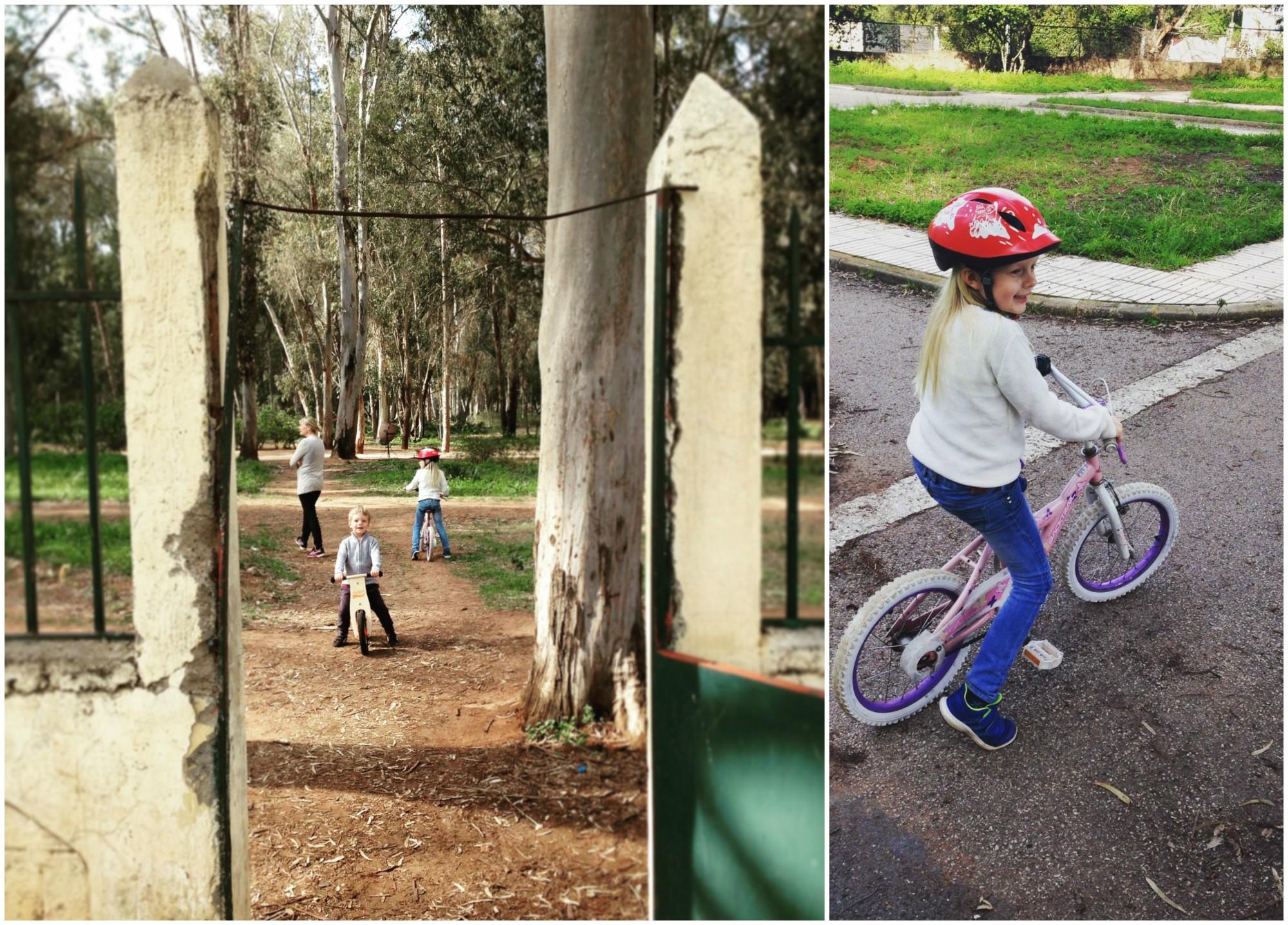 siblingspark